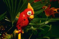 30-papagei_Japan 1950er